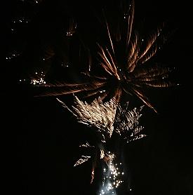Godt nytt år! Foto: Elin Bekkebråten Sjølie © 2013