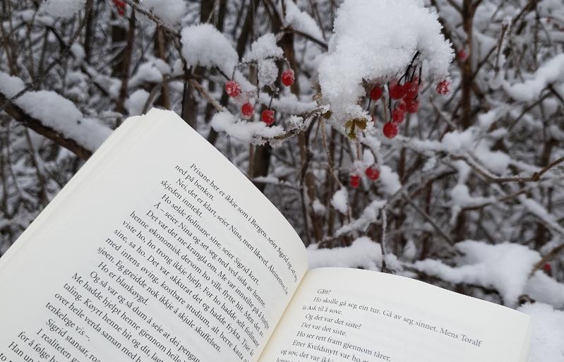 Åpen bok med bakgrunn av bærbusker med snø. Foto: Av en annen verden © 2019